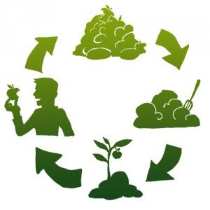 come fare orto utilità compost