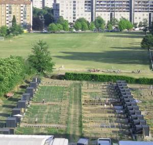 orto urbano come fare orto