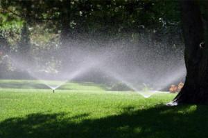 irrigazione come fare orto