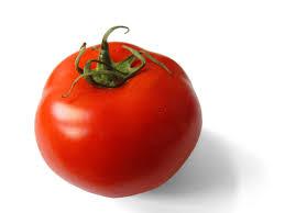 pomodoro come fare orto