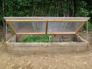 semenzaio come fare orto