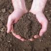 Preparazione del terreno per la semina